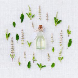 phytothérapie naturopathie